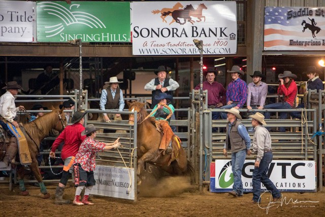 A lot of rodeo action taking place in this John Mohar photograph.