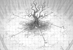 Cursed Oak (3)