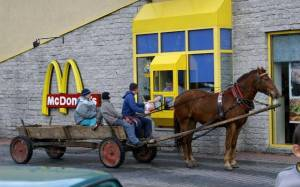 Mc Horse and Cart - Romania at Its Best