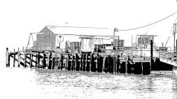 harbor-10