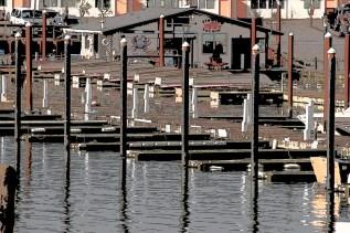 harbor-13