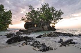 tanzania_zanzibar_tour_pemba_island