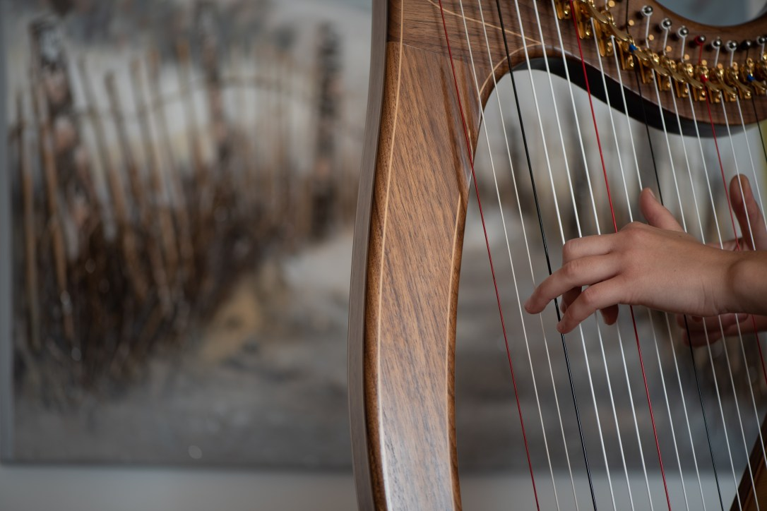 closeup of two hands playing Mark Norris harp with seaside picture in the background