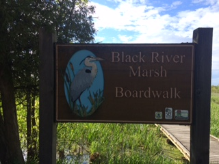 Black River Marsh Boardwalk sign.