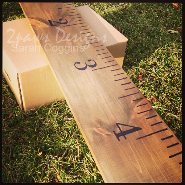 DIY Giant Ruler Growth Chart