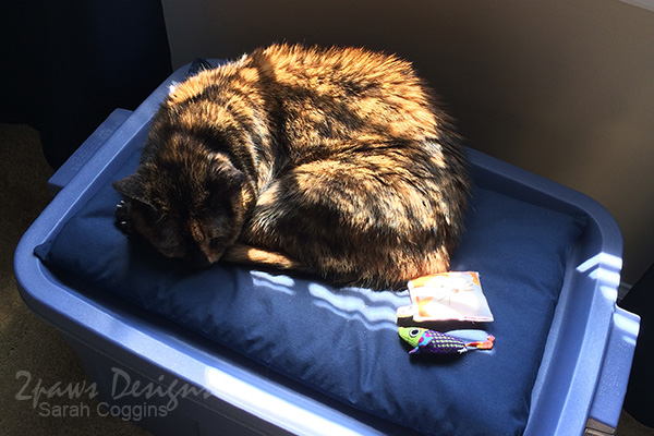 Diy Cat Bed With Storage 2paws Designs