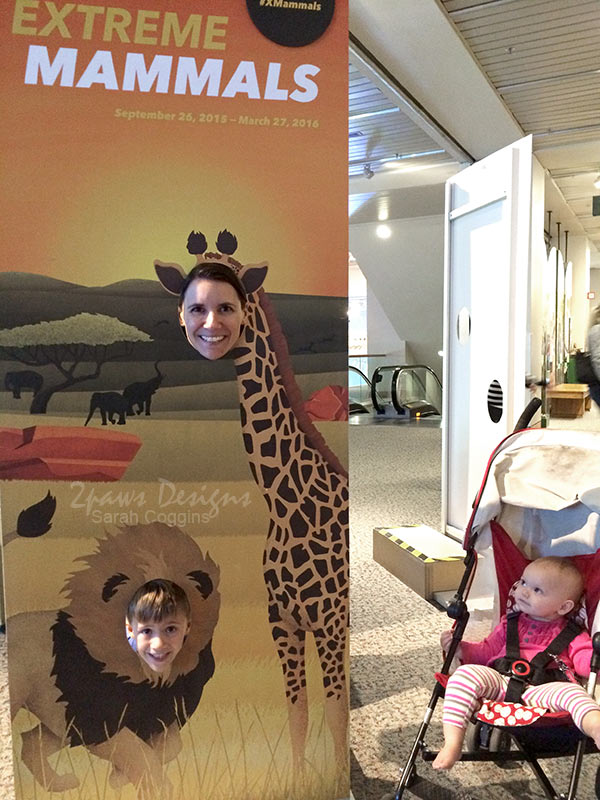 Museum of Natural Sciences: Extreme Mammals Photo Opp