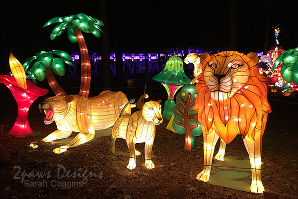 NC Chinese Lantern Festival: Lions