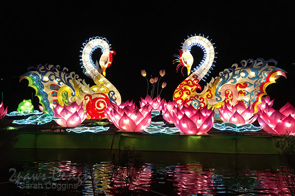 NC Chinese Lantern Festival: Swans
