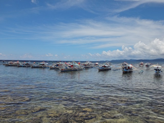 Many boats for transporting people to the Underground River.