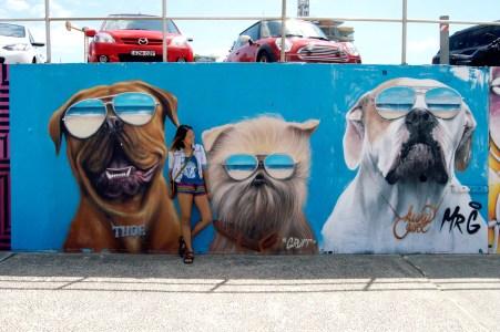Hahaha dogs.