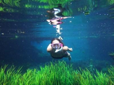 Swimming in Bitter Springs.