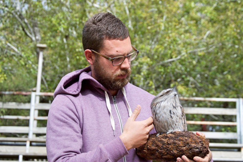Chris and his frogmouth friend.