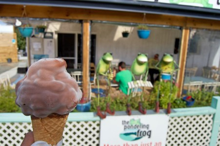 Ice cream at The Pondering Frog.