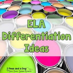Differentiation Ideas for the ELA Classroom