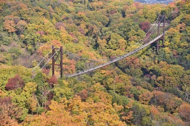 hoshidaenchi bridge autumn