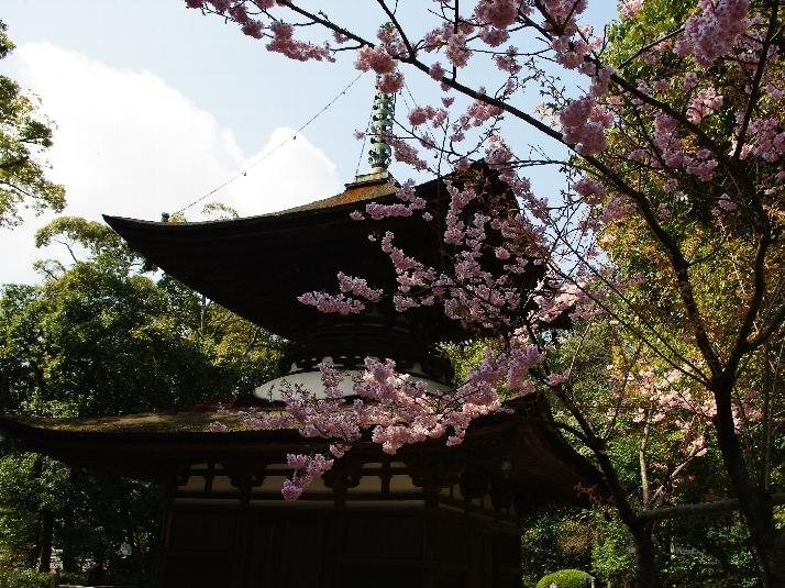 ishiyamadera pagoda