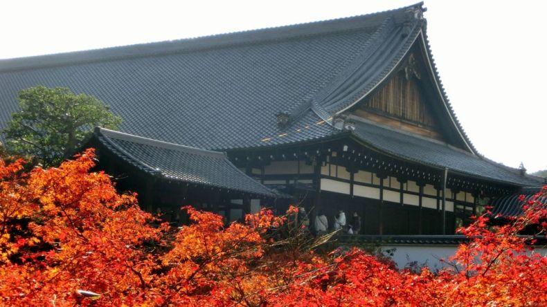 tofuku-ji, autumn
