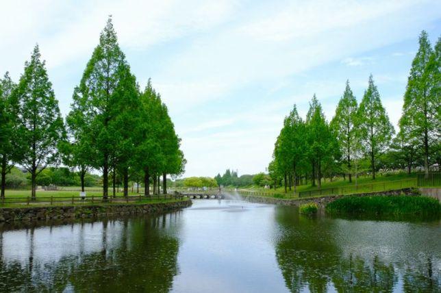 uchiage-gawa ryokuchi park