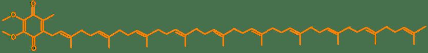 Biochemische structuur van Q10 de super voedingsstof voor energie- en antioxidant bescherming