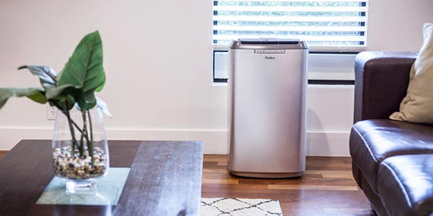 Portable Air Conditioner In Living Room