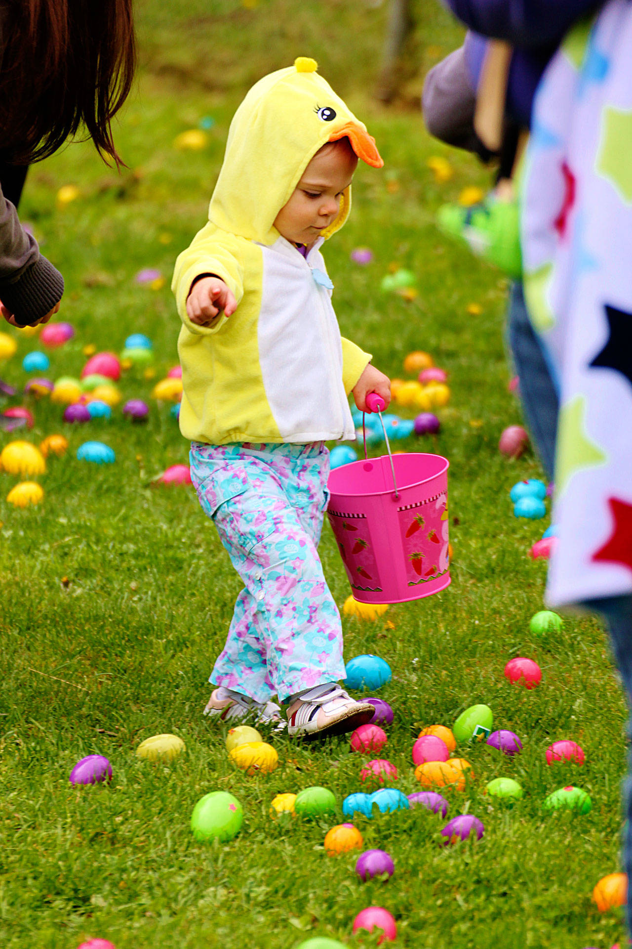 The Hunt Is On Easter Is Near And So Are The Eggs