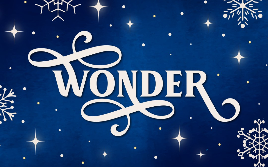 Wonder: A Family Advent Devotional