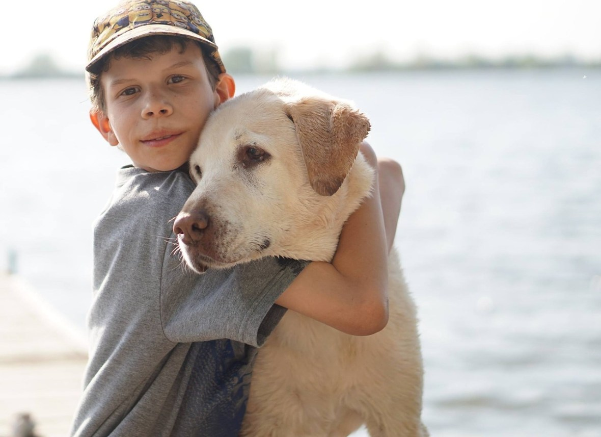 boy hugging yellow labrador dog