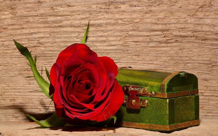 rose-treasure chest_Pezibear