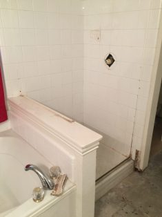 Before -- Standard Shower with some grout degradation