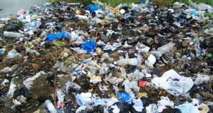 ordures domestiques