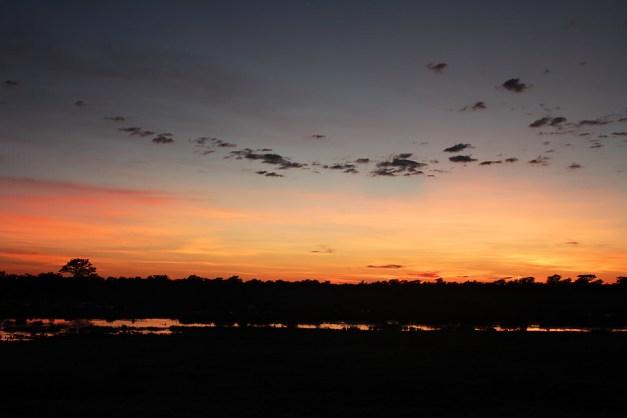 waterhole sunrise