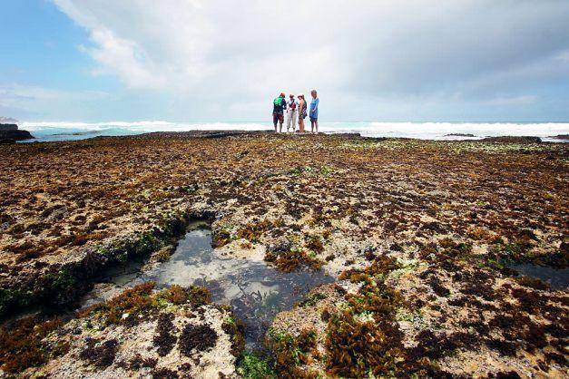 marine walk