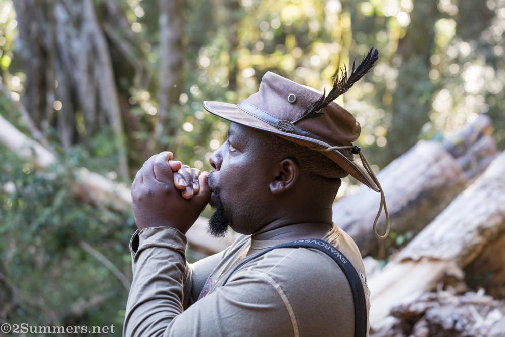 David Letsoalo birding guide