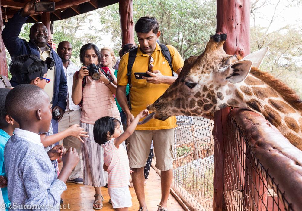 Kids feeding giraffes