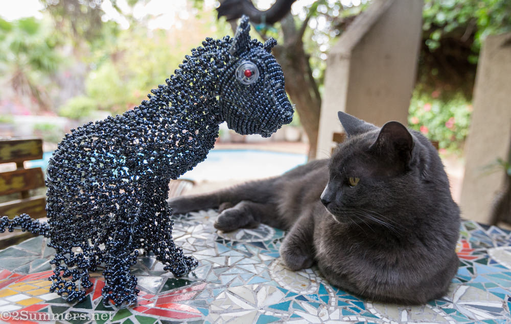 Smokey and Melville Cat Deux