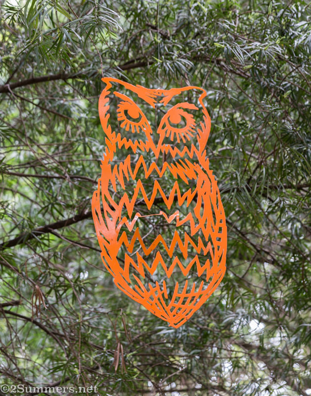 Orange owl in the Wilds