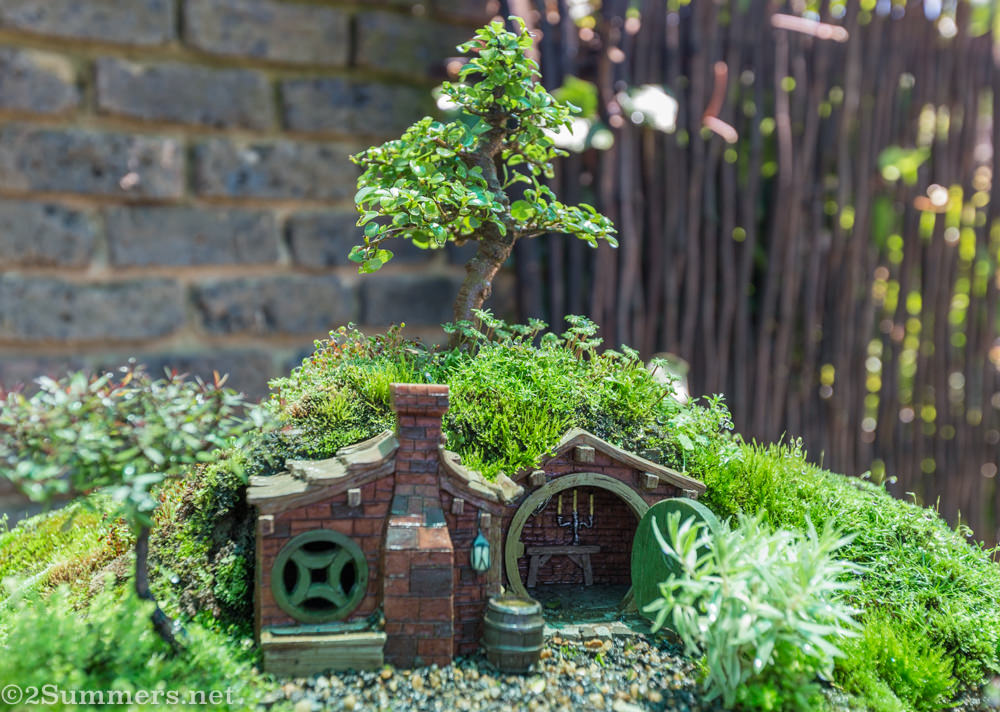 Bonsai Hobbiton