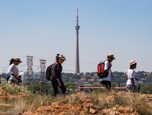 Walking across the Melville Koppies during the monthly cross-koppie hike