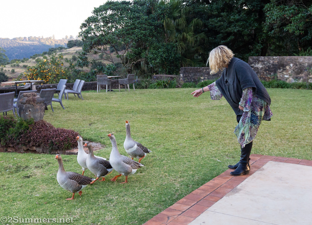 Bridget Hilton-Barber and her geese at Kings Walden in Limpopo.