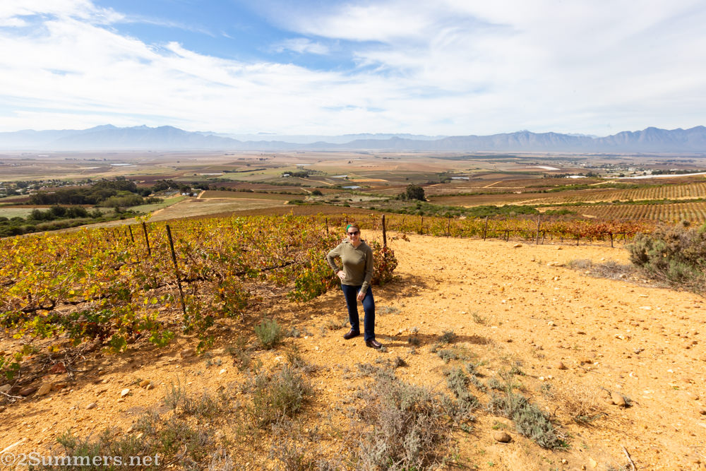 Heather in the Swartland at Allesverloren Wine Estate