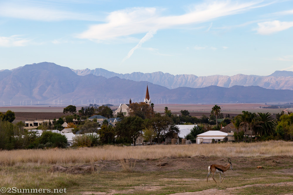 Riebeek Kasteel, one of several quaint South African towns I've visited this year