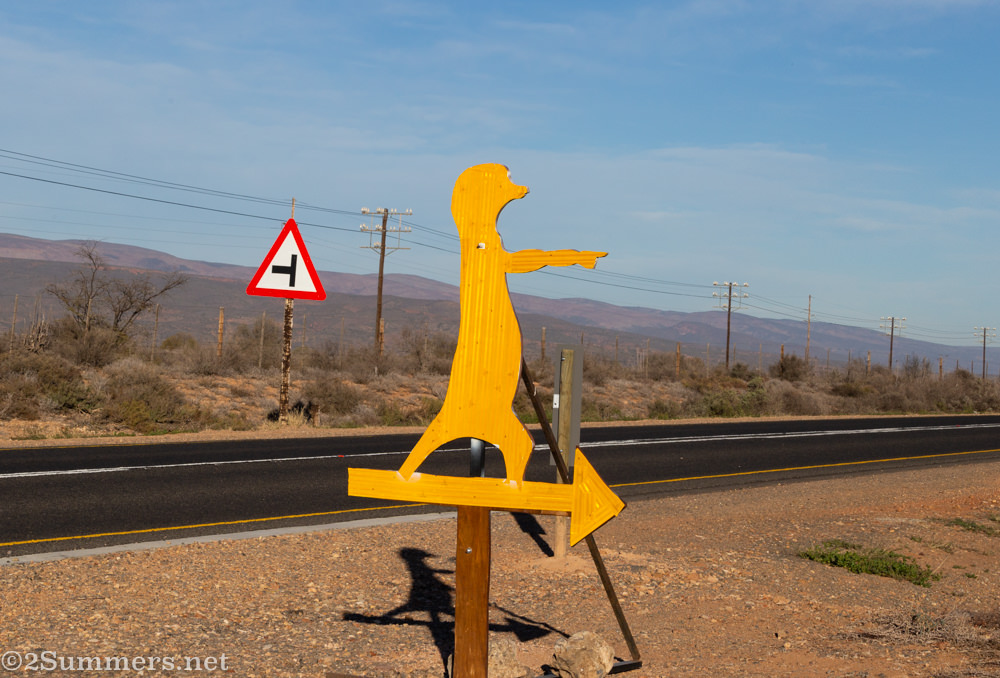 Five Shy Meerkats entrance