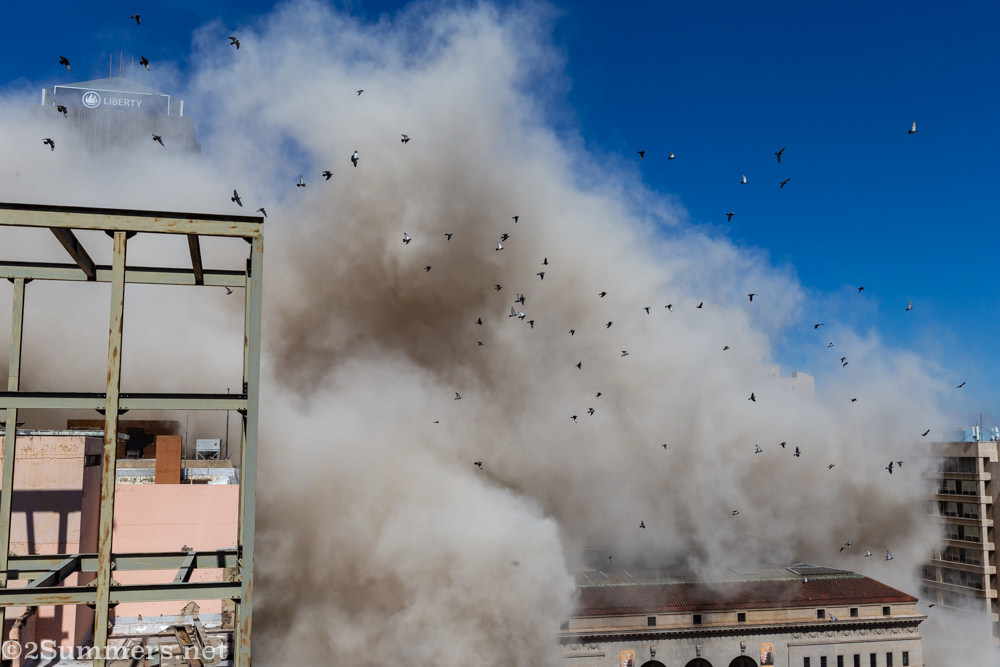 Pigeons fly up after the building is imploded