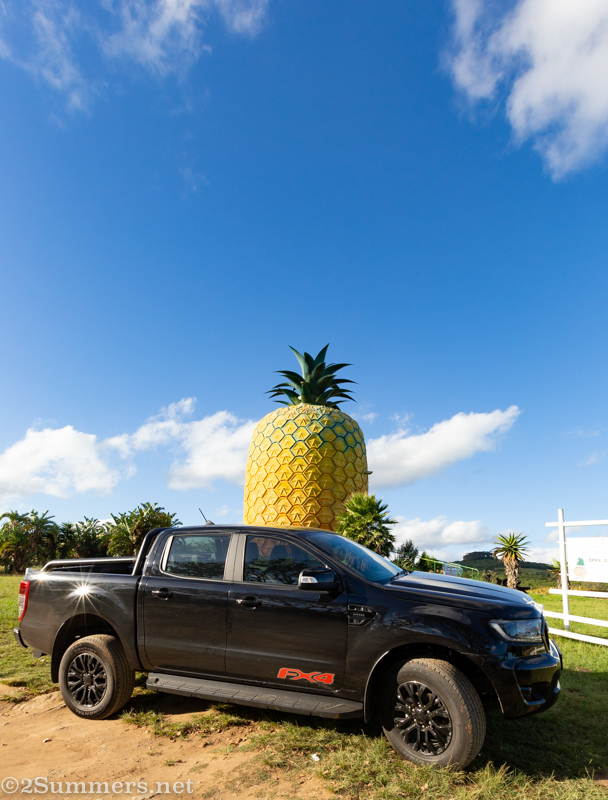 FX4 in front of the Big Pineapple