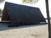 Grass hut on the beach