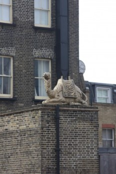 Gloden Camel! - Close to Waterloo Station - London, UK, 2013
