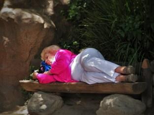 Old Lady sleeping in Disneyland 1