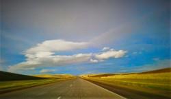 Road Trip 505