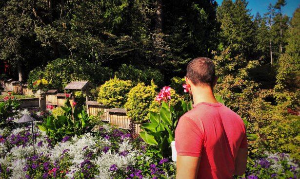 Chris Taylor Buchart Gardens Victoria BC 2